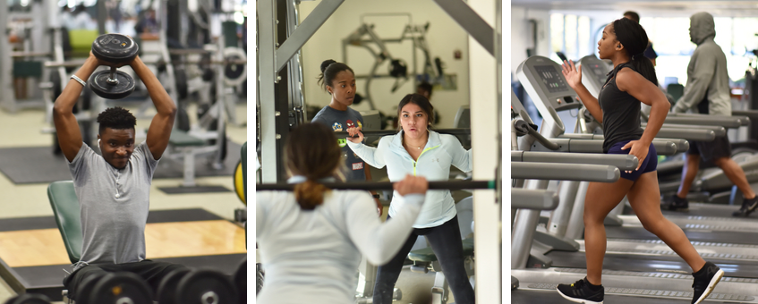 A collage of three scenes in the Delaware Tech wellness center: a woman on a treadmill, another woman doing weighted squat exercises, and a man raising a barbell above his head with both h和s